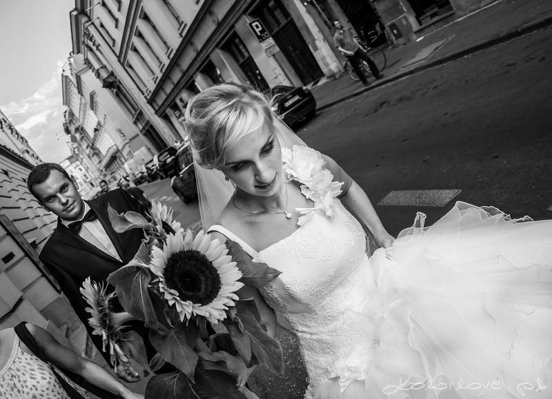 sesja ślubna w Krakowie, para młoda na św. Anny